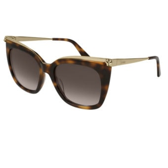TORTOISE SHELL & CHAMPAGNE GOLD with Grey Grad.