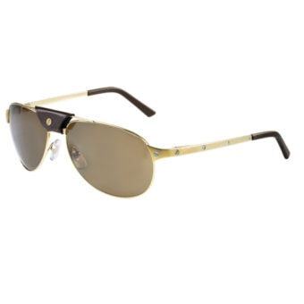 BRUSHED GOLD & BROWN LEATHER with Brown Polarised Silver Flash
