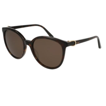 TORTOISE SHELL with Brown